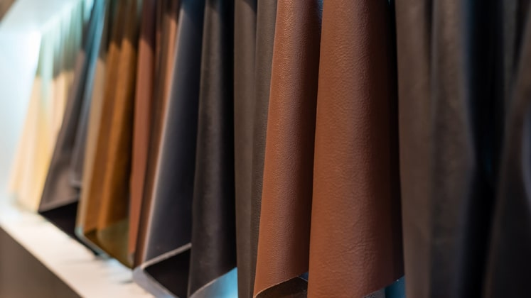 Leather Sector